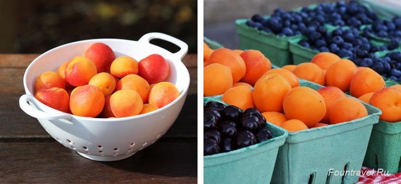 Абрикосы, противопоказания и вред абрикосов