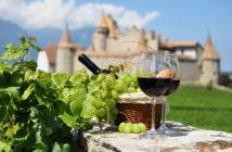 Божоле-Нуво — праздник молодого вина во Франции