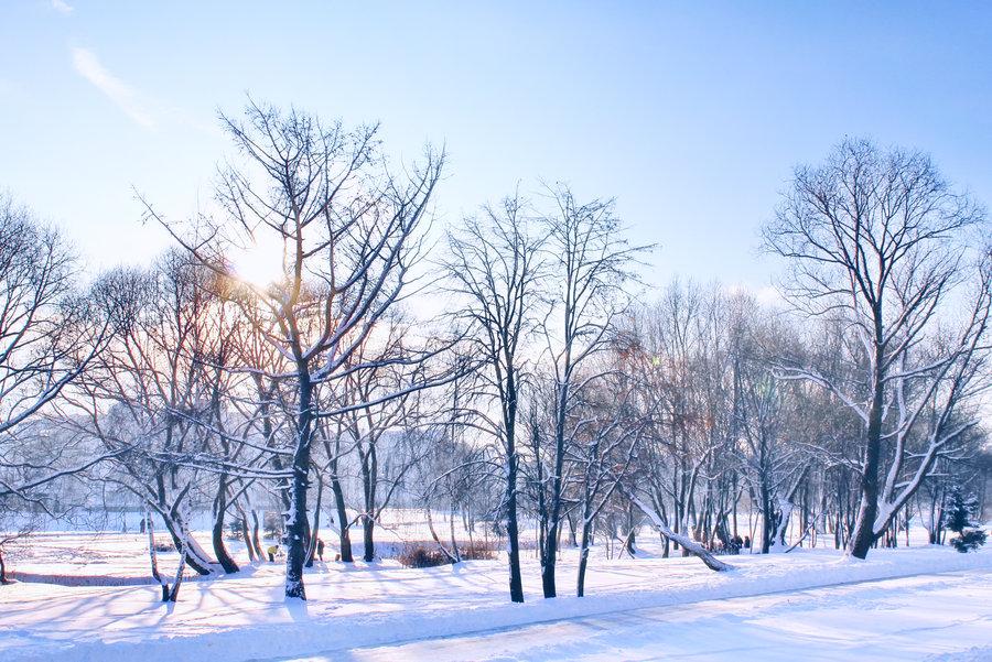 Зимний отдых в Москве