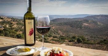 Гастрономический тур из Тель-Авива: виноделие в Израиле