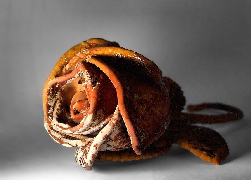 Какие сувениры привезти из Карловых Вар - каменная роза