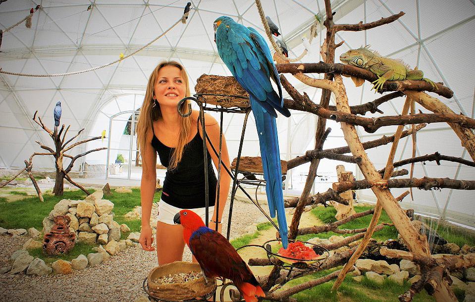 Парк Птиц «Динотерий Коктебель»