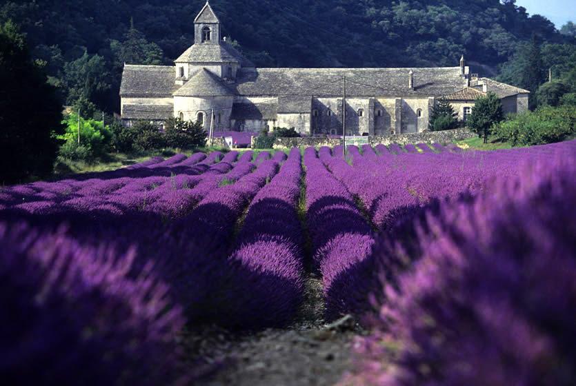 Достопримечательности Горда - аббатство Сенан Деревня Горд Деревня Горд, Прованс gord france 2