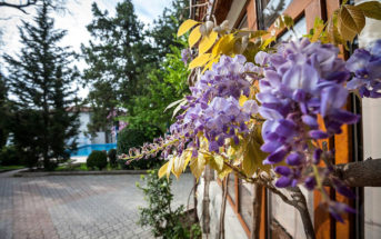 Отели Симеиза — цены, расположение (в центре и у моря), фото и отзывы