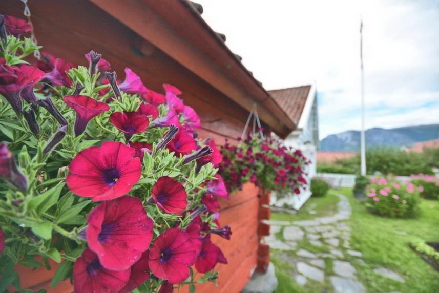 Гостевые дома и кемпинги Согне-фьорда: Vangsgaarden Gjestgiveri