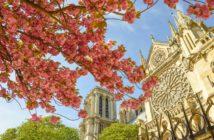 Собор Парижской богоматери (о-в Сите, Париж)