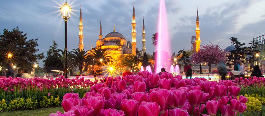 Площадь Султанахмет в период цветения тюльпанов (Стамбул, Турция)
