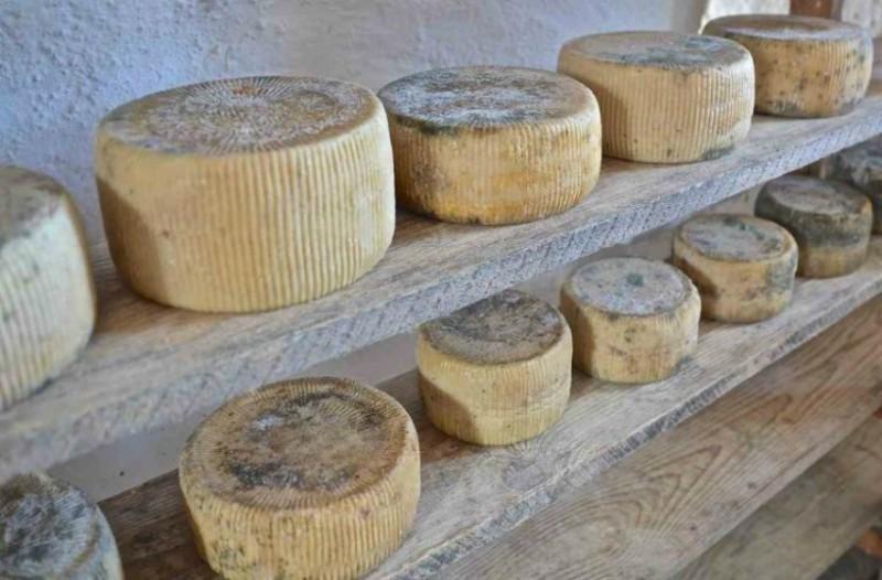 Что попробовать на Крите из сыров: гравьера