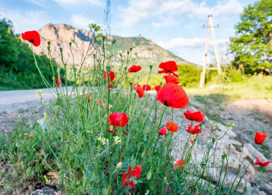 8 интересных мест Крыма, которые редко попадают в путеводители
