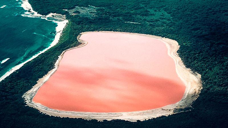 Кояшское розовое озеро в Крыму (ФОТО)