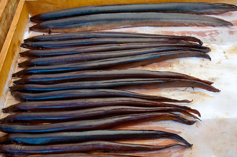 Что попробовать в Калининграде из рыбы: копченый угорь