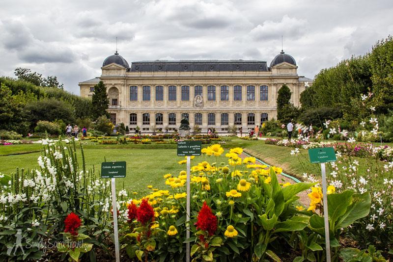 Париж с ребенком: посещение Ботанического сада Париж с детьми Отдых в Париже с детьми kuda shodit v parizhe s detmi 8