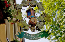 Венский лес: виноградники и дегустации