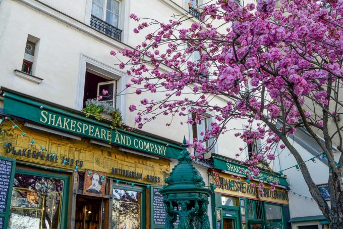 Цветущая аллея в районе магазина Shakespeare and Co в Париже
