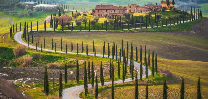 Провинция Кьянти — самое вкусное и красивое из Тосканы