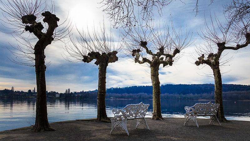 Куда поехать из Штутгарта: Боденское озеро