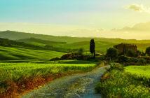 Провинция Кьянти от А до Я: холмы Тосканы