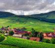 Винный маршрут Эльзаса: 10 сказочных мест и городов