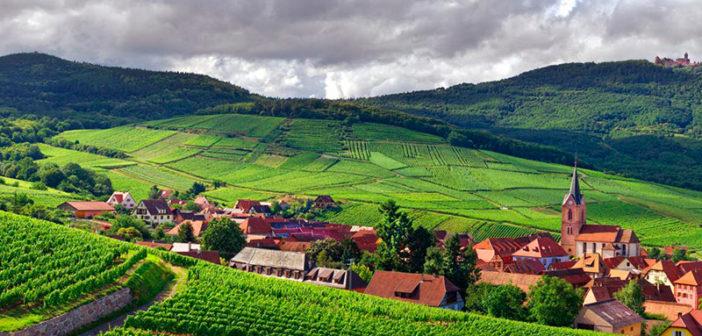 Винный маршрут Эльзаса: 9 сказочных мест и городов