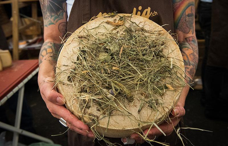Фестиваль сыра в Бра: что попробовать