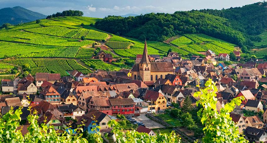 Французское вино: виноградники Эльзаса