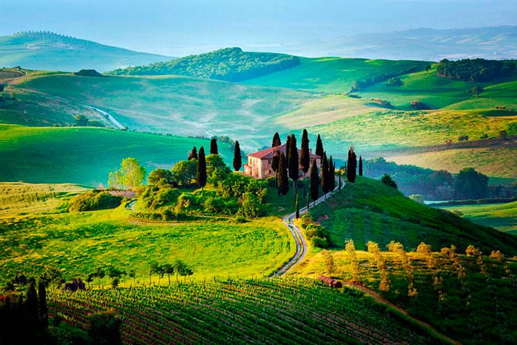 Куда поехать из Флоренции на авто: Кьянти