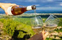 Лучшие винодельни Прованса: Белле (Bellet) прованс вино Винодельни Прованса: лучшие красные, белые и розовые вина luchshie vina provansa bellet 1 214x140