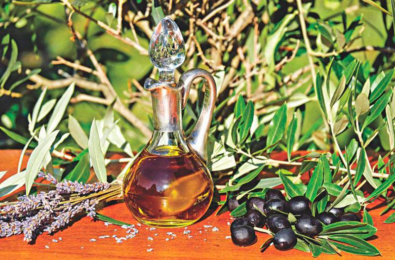 Экскурсии на оливковые фабрики и фермы Крита