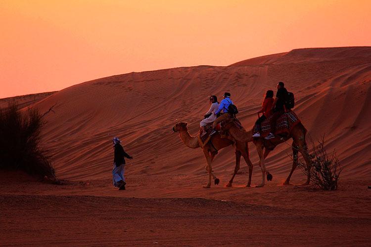Экскурсия по пустыне в Дубае