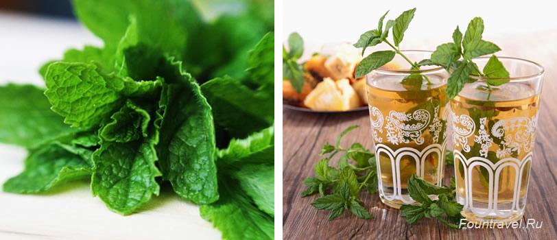 Зеленый мятный чай / Марокко