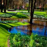 Парк Кёкенхоф (Лиссе, Нидерланды)