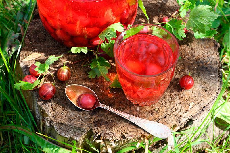 Еда в Беларуси: попробуйте ягодные морсы!