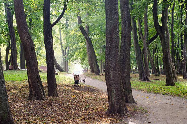 Парк Беккера в Янтарном